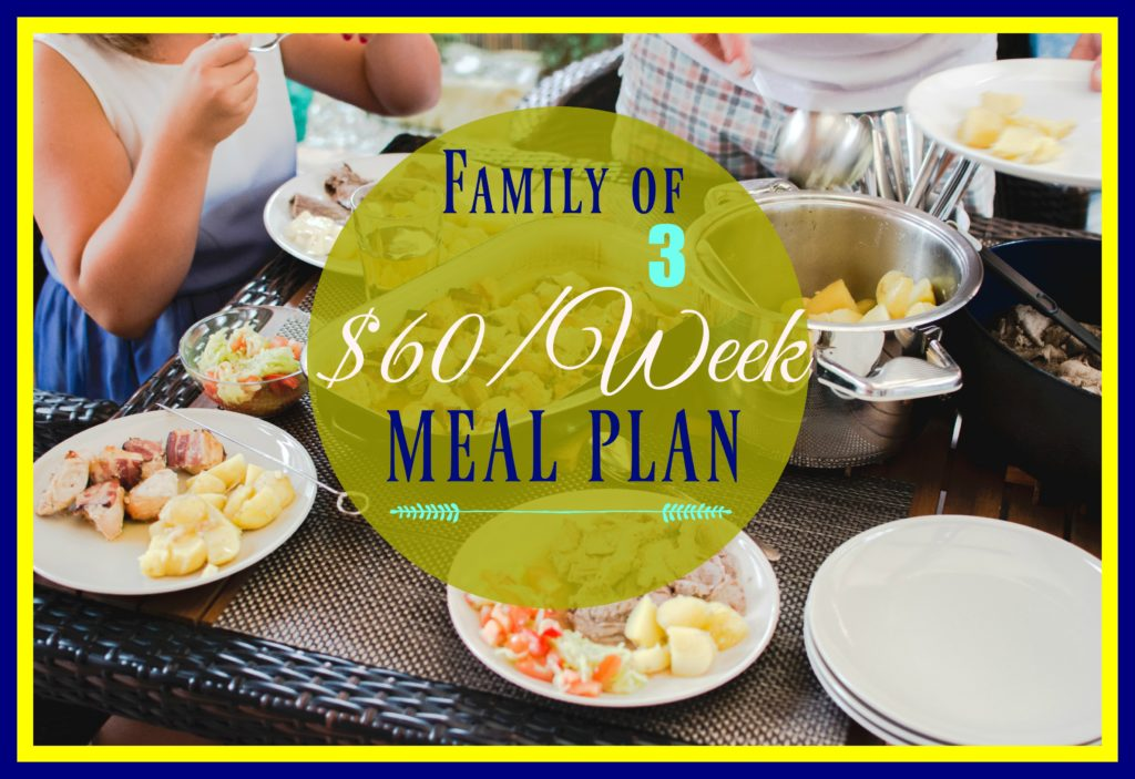 60 weekly meal plan and grocery haul