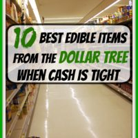 10 Best Edible Items From the Dollar Tree When Cash is TIGHT