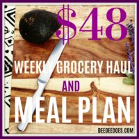 Our $48 Weekly Grocery Shopping Haul Meal Plan for the Week of 11/20