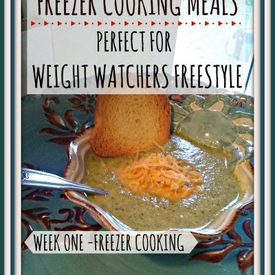 Low Point Freezer Cooking Meals Perfect for Weight Watchers Freestyle – Week 1