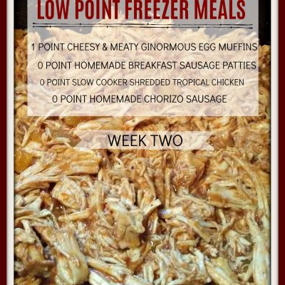 Low Point Freezer Cooking Meals Perfect for Weight Watchers Freestyle – Week 2- PIC HEAVY POST